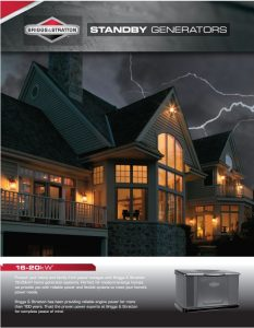 Briggs & Stratton Standby Home Generators Services