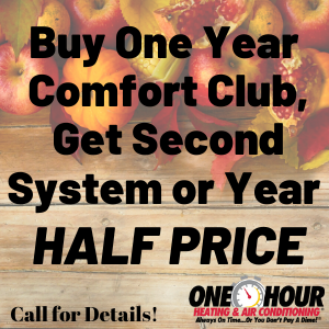 Buy one year, get second system or year half price