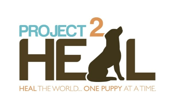 Project 2 Heal
